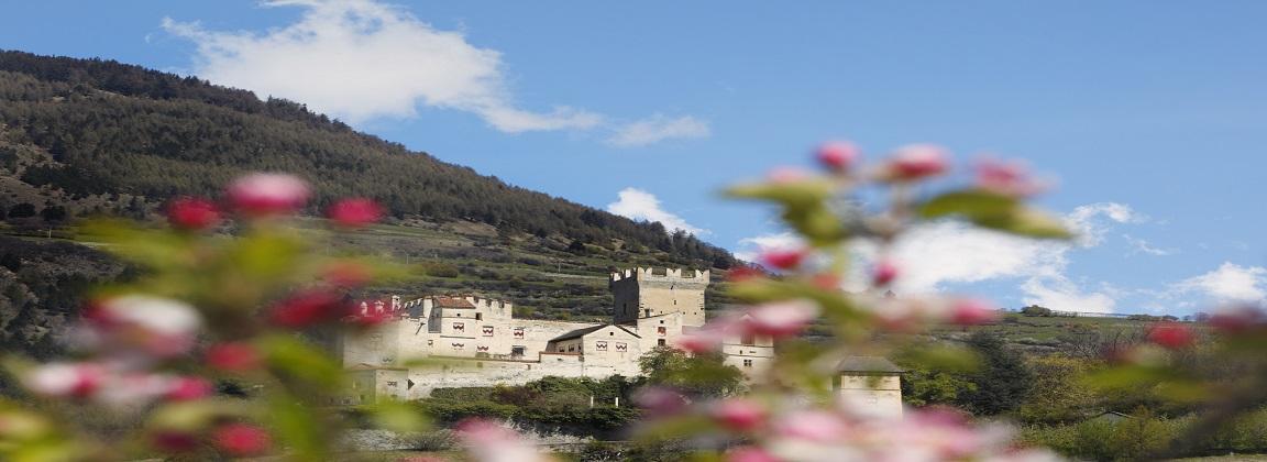 Sudtirol Tophotels Die Besten 4 Sterne Und 5 Sterne Hotels In